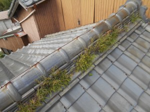 亀山市 雨漏り屋根修理